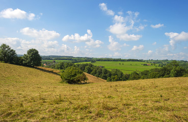 Hilly landscape in summer