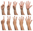 canvas print picture - Set of counting hands isolated on white background