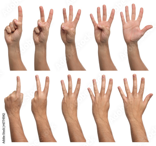 canvas print picture Set of counting hands isolated on white background