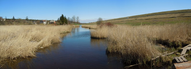 Wet place with reed beds