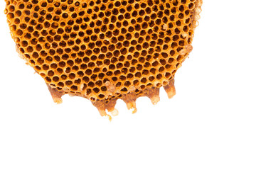 Beehive deserted isolated on the white background