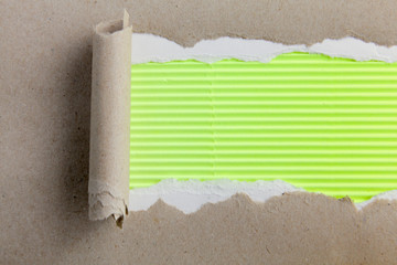 Torn of green paper, isolated