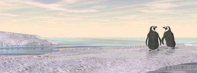 Penguins couple - 3D render