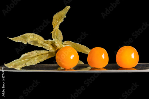 canvas print picture physalis schwarz