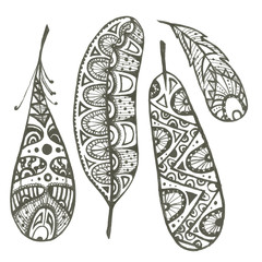 Set of sketch decorative feathers