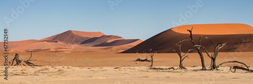 Fotobehang Woestijn Panorama of the Sossusvlei