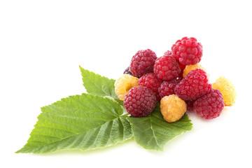 Ripe raspberries.