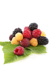 Raspberries and blackberries with green leaves.