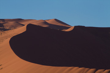 Curves of an orange sand dune