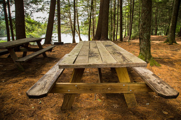 Picnic table in rural park