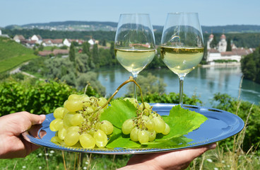 Pair of wineglasses against Rhine river and vineyards in Rheinau