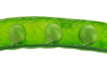 Open green pea pod with three peas