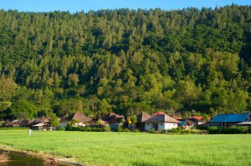 Village on Bali, Indonesia