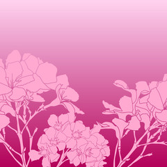 background of flowers 8