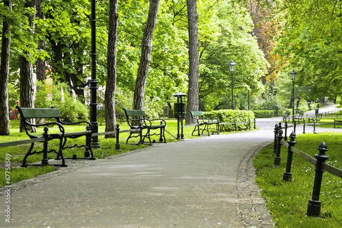 canvas print picture Bench in green park