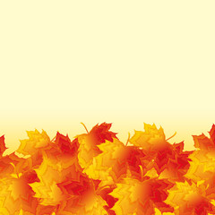 Autumn background with golden maple leaves