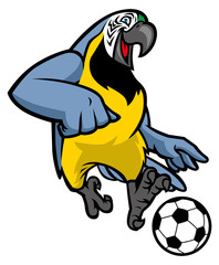 macaw bird playing soccer