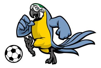macaw bird soccer mascot