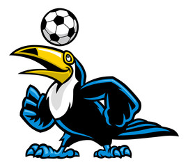 toucan bird play soccer