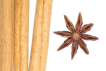 anise and cinnamon isolated on a white