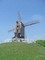 Bruges moulin à vent
