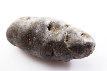 Vitelotte kartoffel