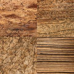 Holzarten, Hintergrund
