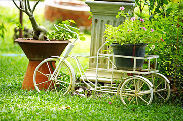 close up bicycle and flower