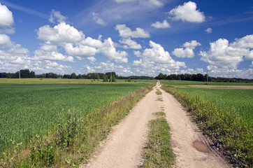Rural road through fields  and blue sky with clouds
