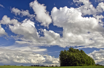 summer agriculture landscape with clouds