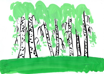birches on field