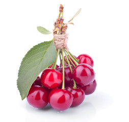 The Bunch of Fresh Cherries