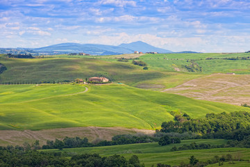 Classical rural landscape in Tuscany early in morning in summer