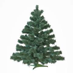 Christmas undecorated tree isolated