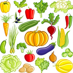 Vegetable's collection