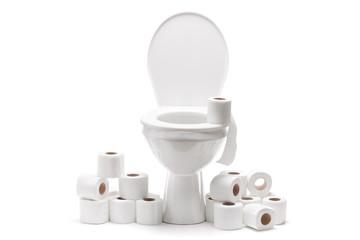 Pile of toilet paper around a toilet bowl