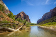 canvas print picture - Virgin river in Zion National Park, Utah