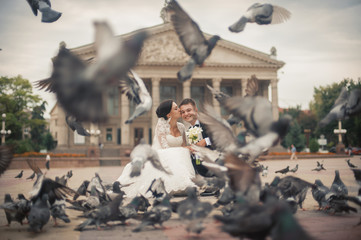 Happy bride and groom kissing between pigeons