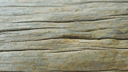 old wood, wooden background