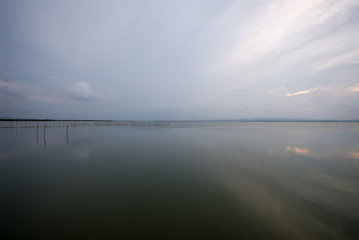The Albufera Natural Park