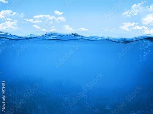 canvas print picture underwater