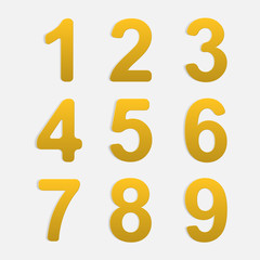 Vector Number Set.