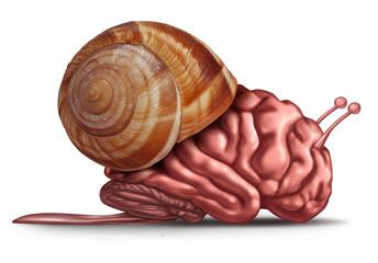 Thinking Slow