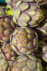 Green artichokes at the farmers market