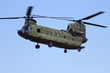 Chinook transport helicopter - 67784539