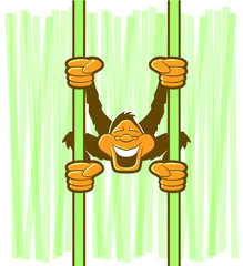 Illustration of a monkey swinging on green vines