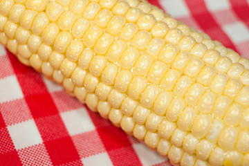 Corn on the cob macro on red tablecloth