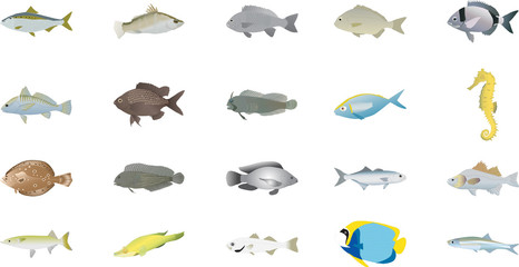Ocean fish vector set