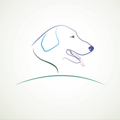 Vector image of dog on white background