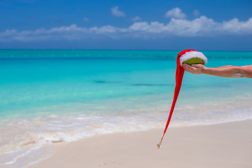 Coconut with Santa hat in male hands against the turquoise sea